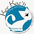 Ker Katz le village des chats