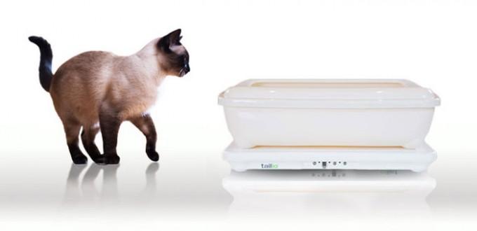 litière pour chat connectée